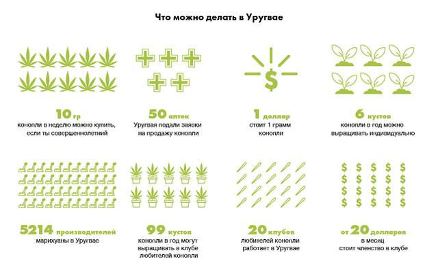 Марихуана законы в россии вырастить марихуану фото