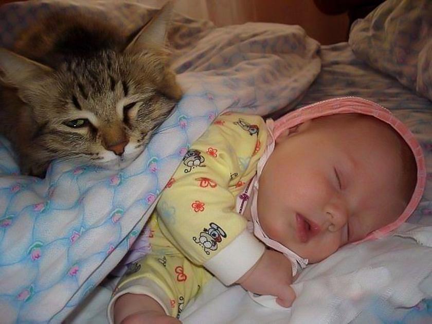 Смешная картинка про сон мамы, аву прикольная