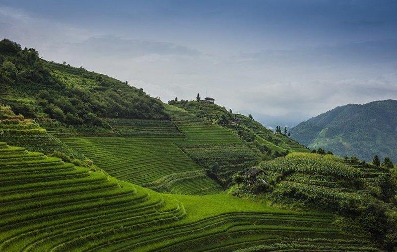 Рисовые террасы на горном хребте Лоншен в провинции Гуаньси виды, города, китай, красота, необыкновенно, пейзажи, удивительно, фото
