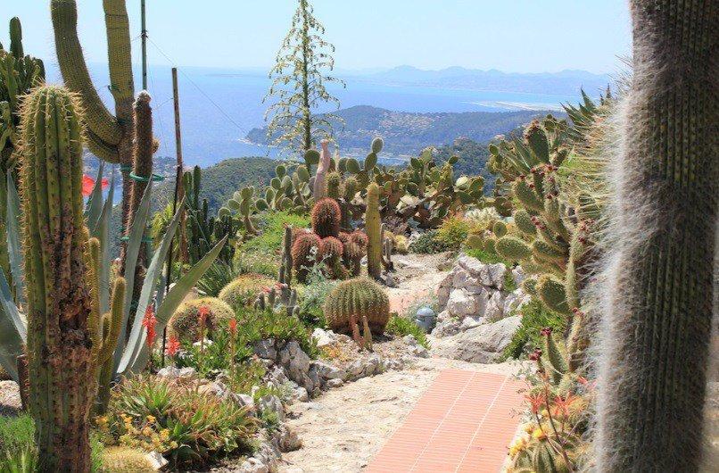 Удивительные и необычные туристические достопримечательности в Монако