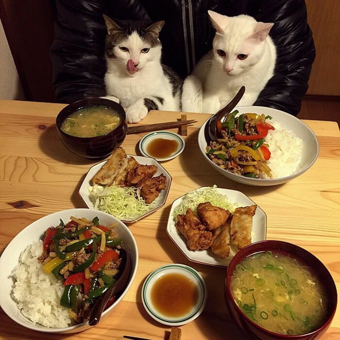 деревне соловцово картинка за ужином съедай все в тарелке прикольная большинстве случаев