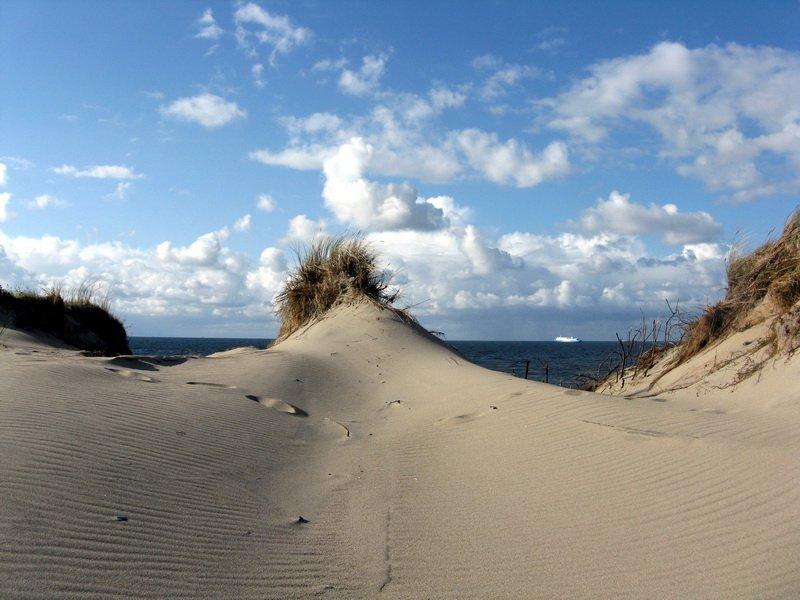 Песчаные дюны Куршской косы.