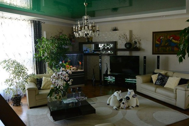Гостиная: аквариум, зеленый потолок и лестница