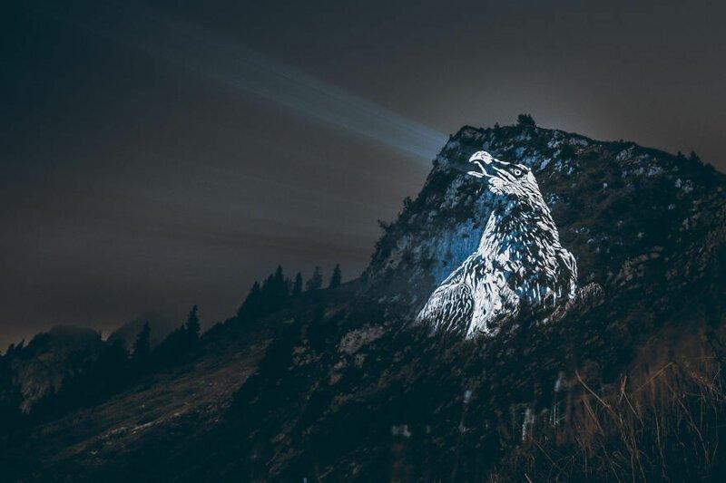 6. Стервятник горы, животные, исчезновение, рисунки, спасение, художник