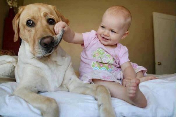 Фотографии, которые доказывают – вашему ребенку точно нужна собака