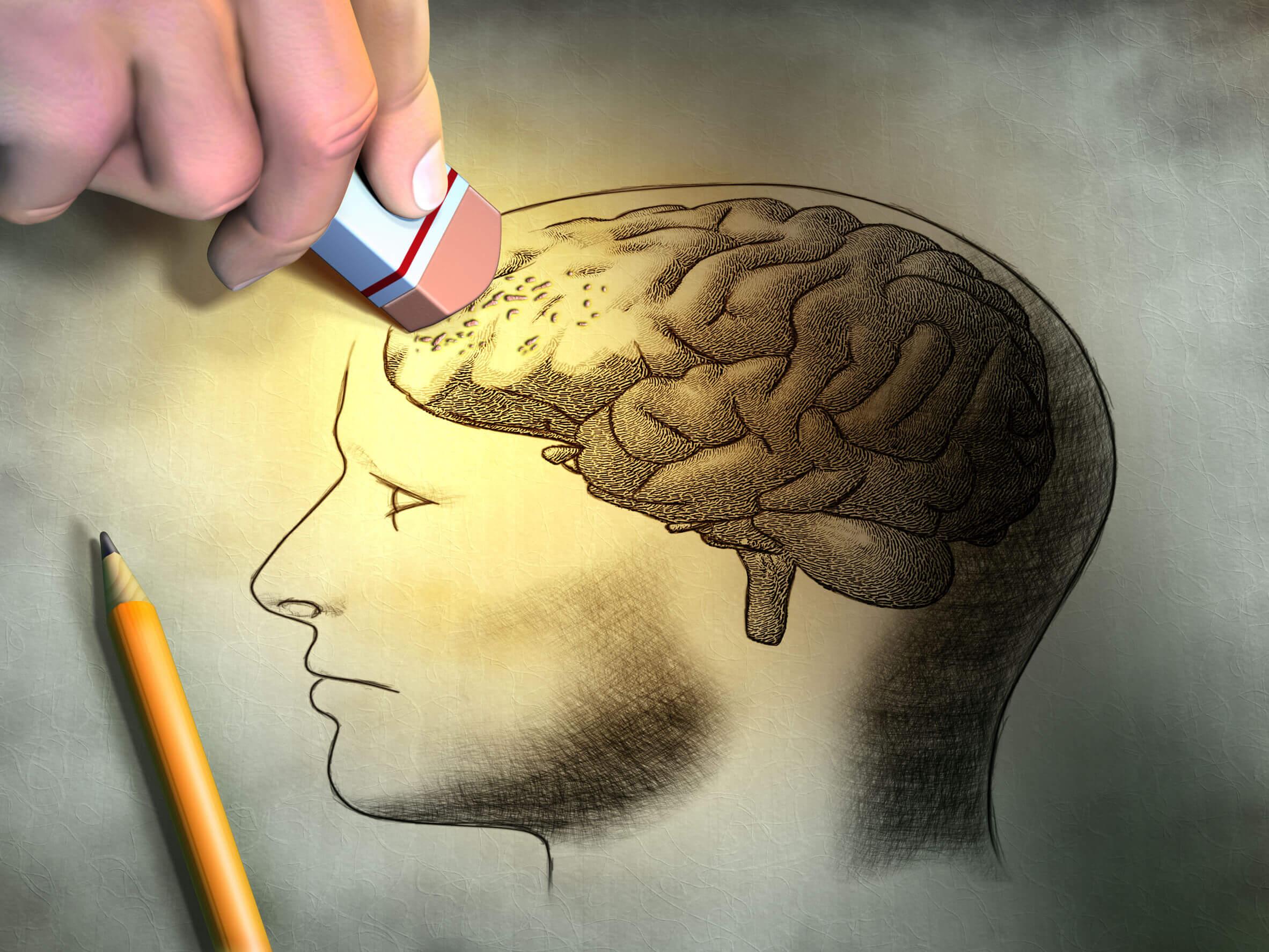 Возможность изменения воспоминаний стала еще ближе мозг человека,наука,нейробиология,память человека