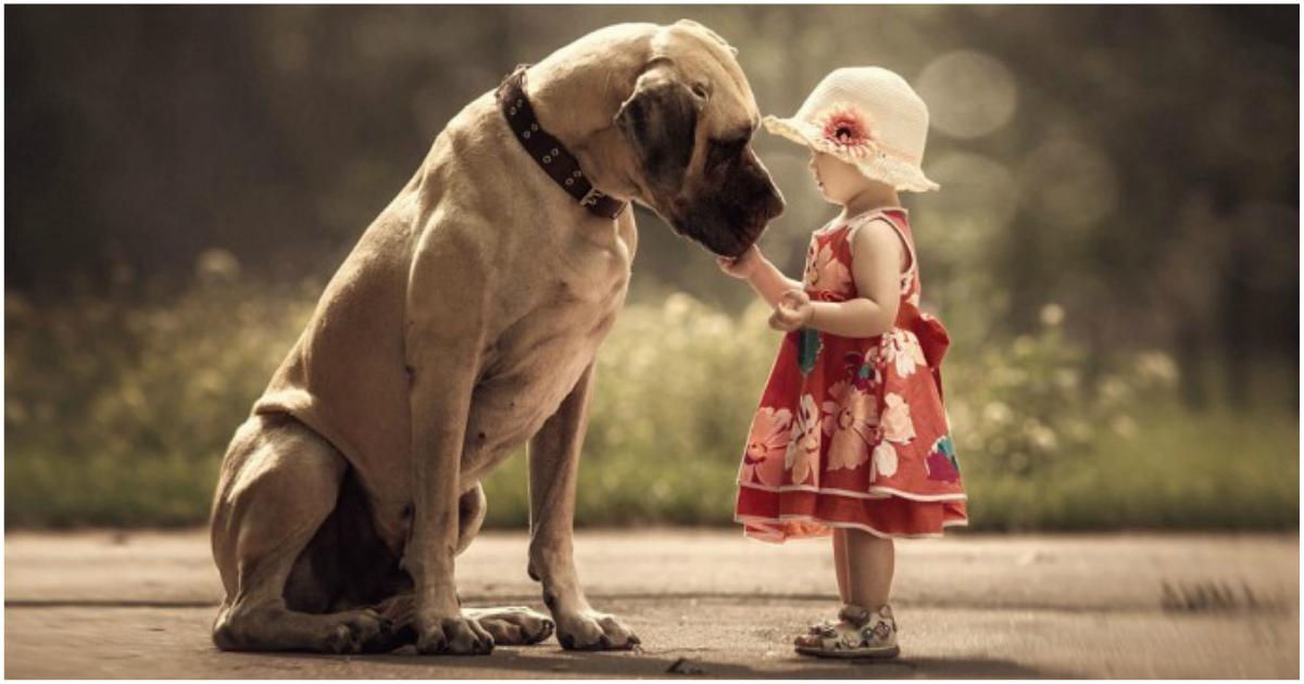 «Маленькие дети и их большие собаки!» Потрясающая фотосессия из России)