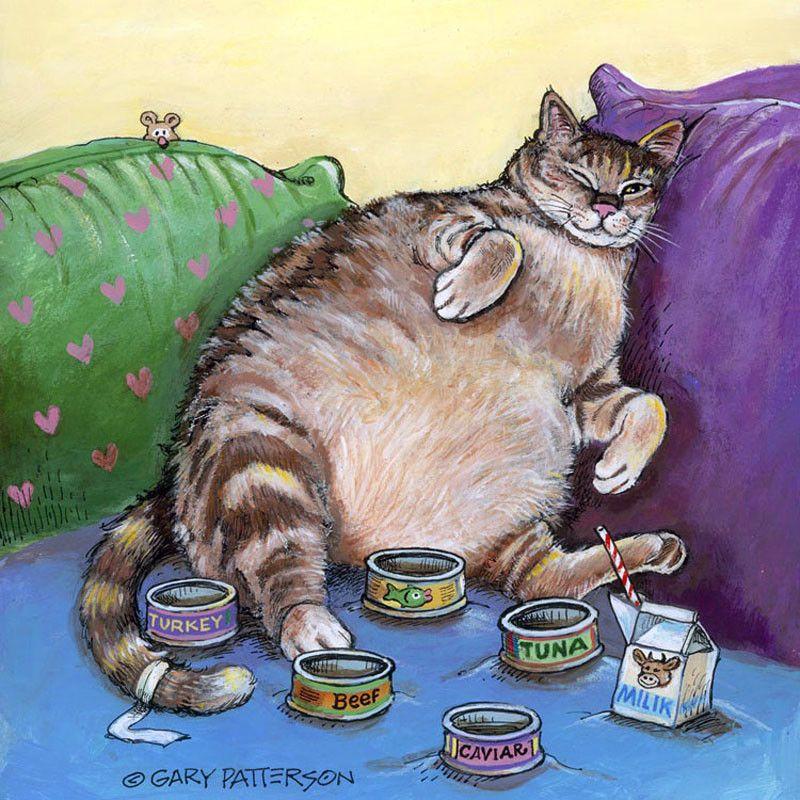исторический приколы открытки коты комбинированной дачной