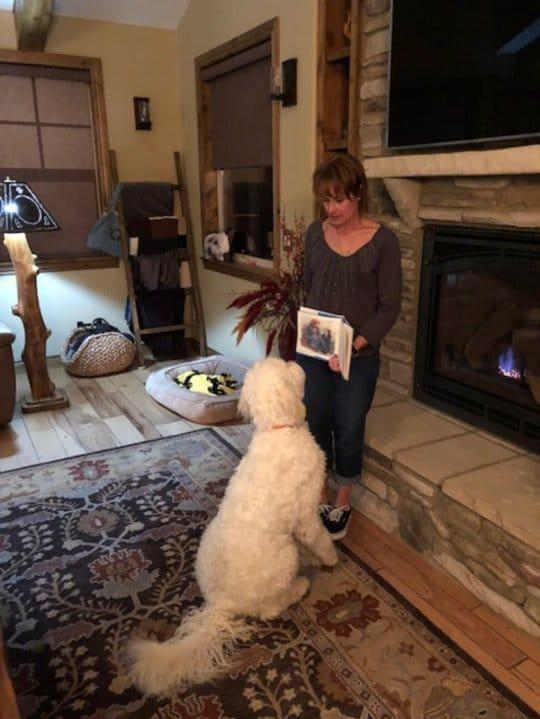«Мы не верили, что она научит нашего пса читать!» Но кинолог очень удивила хозяев питомца