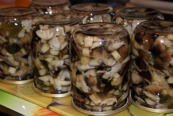 Маринуем очень вкусные грибы сами. Больше магазинные моя семья не покупает!