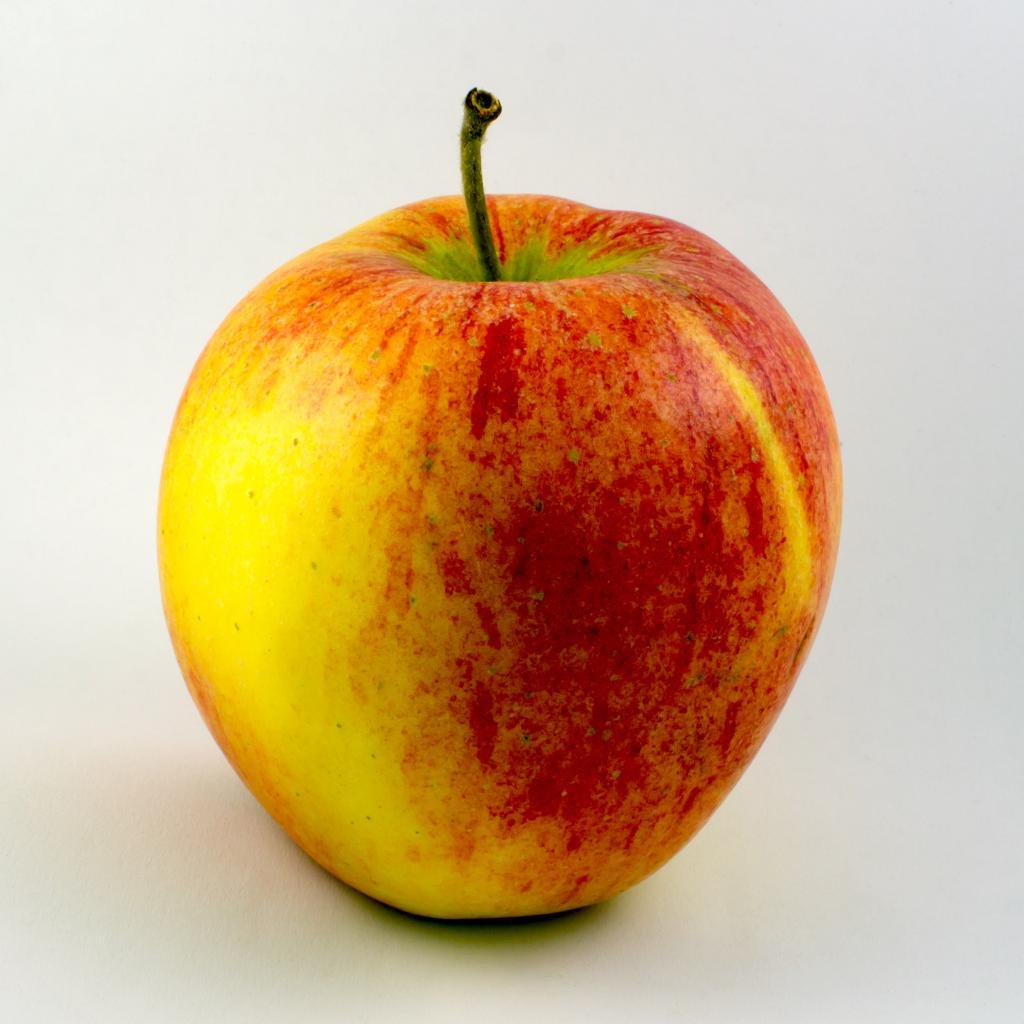 Яблоня Пинова: описание с фо…