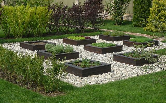 Декоративный огород своими руками фото 779