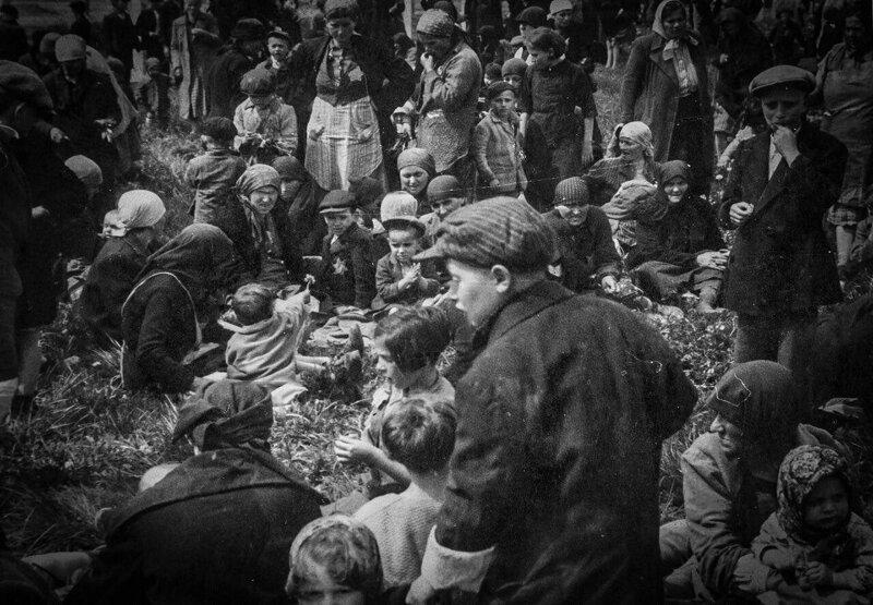 Малыш дарит мальчику постарше цветок после прибытия в Освенцим, 1944 год. Все на фотографии будут убиты в течение нескольких часов. жизнь, прошлое, ситуация, факт