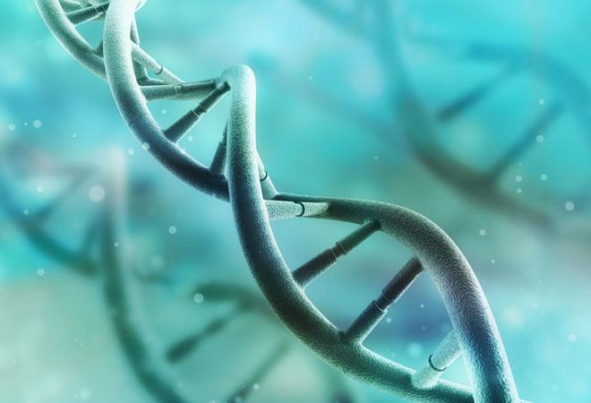 Ученые выяснили, что изменение одного гена может позволить есть сколько угодно без набора веса