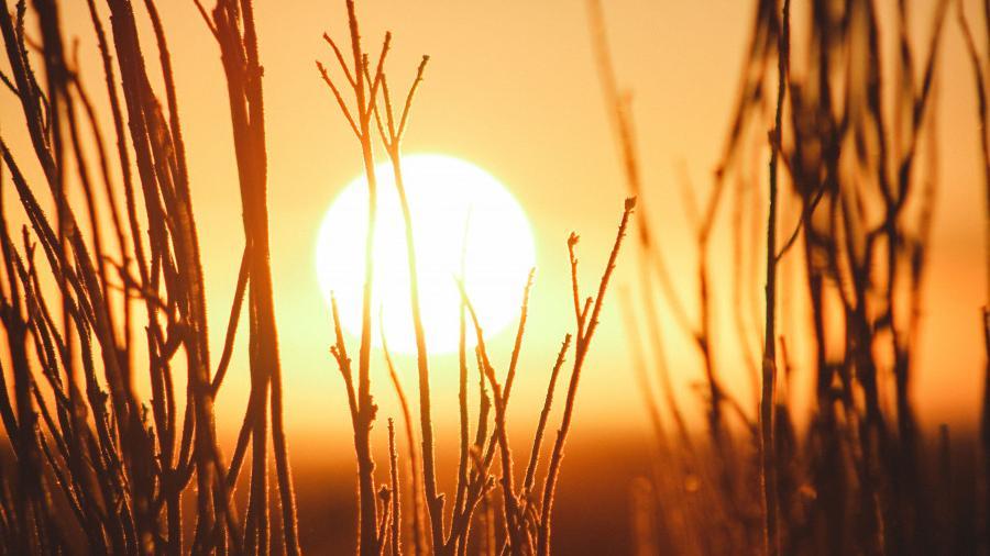 Солнце в знаке Рака (21.06 - 23.07): как обрести внутреннюю гармонию и мир