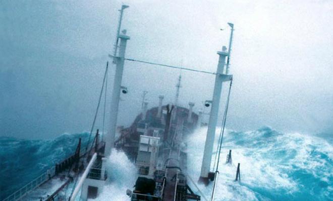 Контейнеровоз гнется от силы воды, но противостоит шторму Культура
