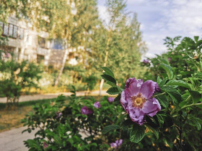Следы советского брутализма  Чернобыль, кино, литва, место, сериал, съемка, фото