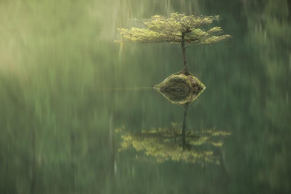 Красота девственной природы природа