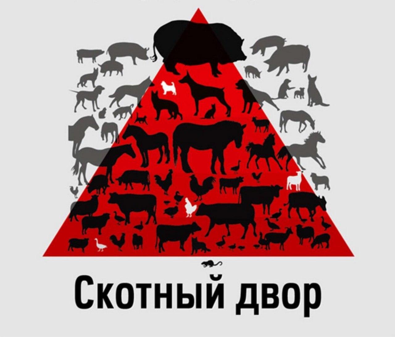 Скотный двор у стен российского посольства