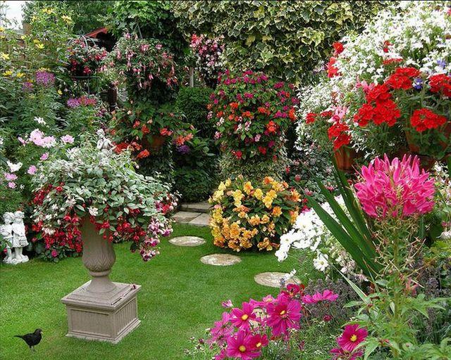 Создайте красивый душистый сад, который привлечет полезных птиц и насекомых