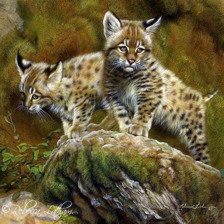 Rebecca Latham с любовью к живописи и животному миру