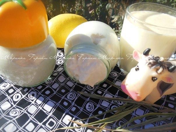 Майонез на молоке (без яиц) …