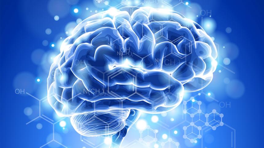 Чего человеческий мозг не знает сам о себе