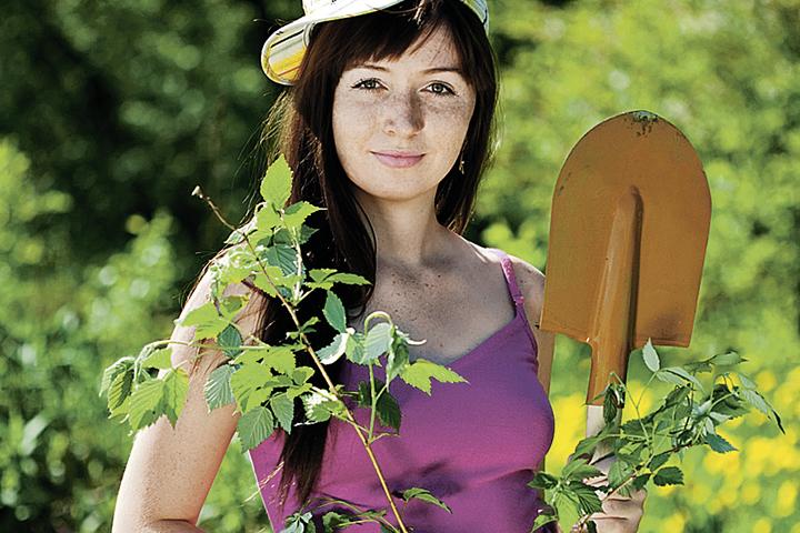 Как выбрать качественный посадочный материал - советы агронома