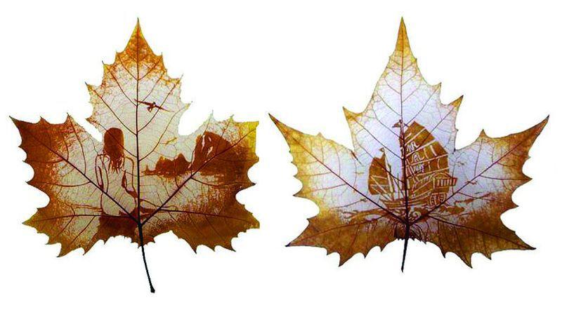 Рисунки на листьях клёна