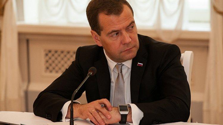Медведев призвал развивать г…