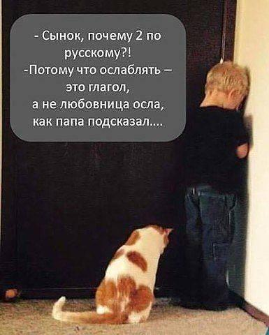 https://mtdata.ru/u7/photo9E46/20825434859-0/original.jpeg#20825434859
