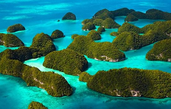 Остров Палау вводит уникальн…