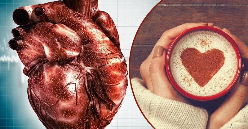 Влияние кофеина на сердце
