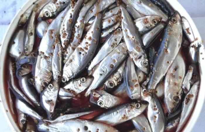 Сто грамм кильки за минуту: Как без труда почистить мелкую рыбешку