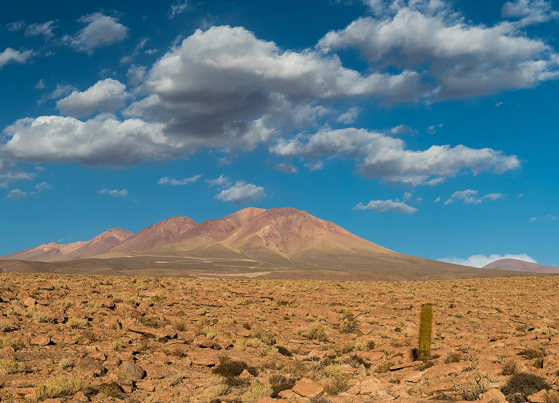 Картинки с пустыней атакама