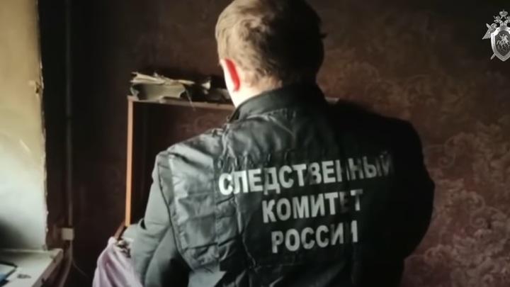 ТРОЙНОЕ УБИЙСТВО В ОРЕНБУРГСКОЙ ОБЛАСТИ: ФЕЙКИ И ФАКТЫ россия