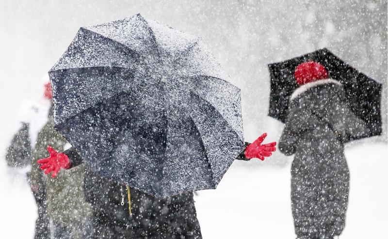 Аномальный февраль: Такого снегопада Москва не видела 100 лет