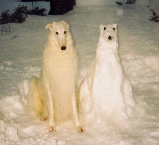 Что ещё можно слепить из снега кроме снеговика?