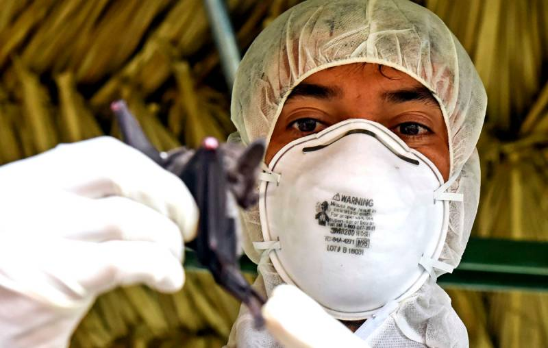 США и коронавирус: три неудобных вопроса
