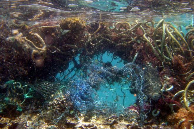 Тихоокеанское мусорное пятно