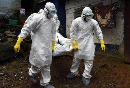 Эксперт назвал сроки прихода в Россию эпидемии коронавируса