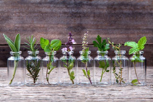 Как использовать эфирные масла? Ароматные рецепты на все случаи жизни