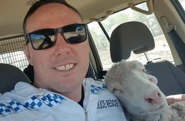 Полицейский из Австралии отл…