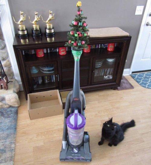 Как выглядят новогодние ёлки в домах людей, у которых есть домашние питомцы
