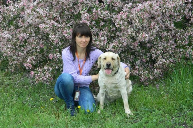 Чтобы спасти собак - войну остановили на полчаса! Коты блокадного Ленинграда