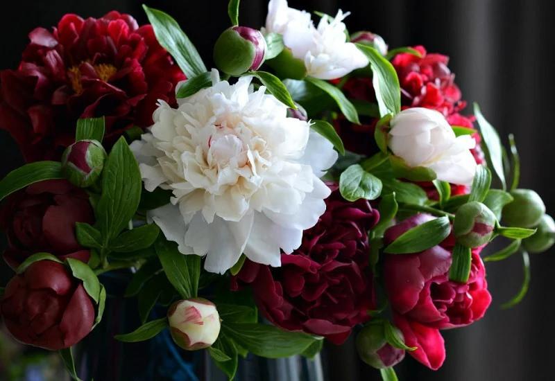 Потрясающе реалистичные фарфоровые цветы Олеси Галущенко