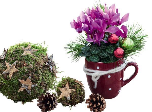 Волшебное преображение: 10 идей новогоднего декора для террасы идеи для дома,интерьер и дизайн,новогодний декор