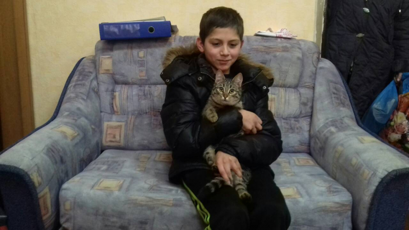 Кот согрел в сарае пропавшего мальчика