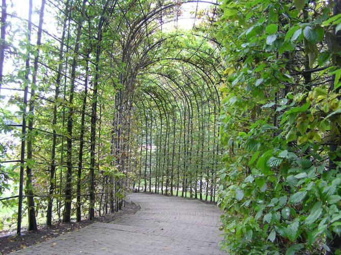 Сад ядовитых растений Альнвик