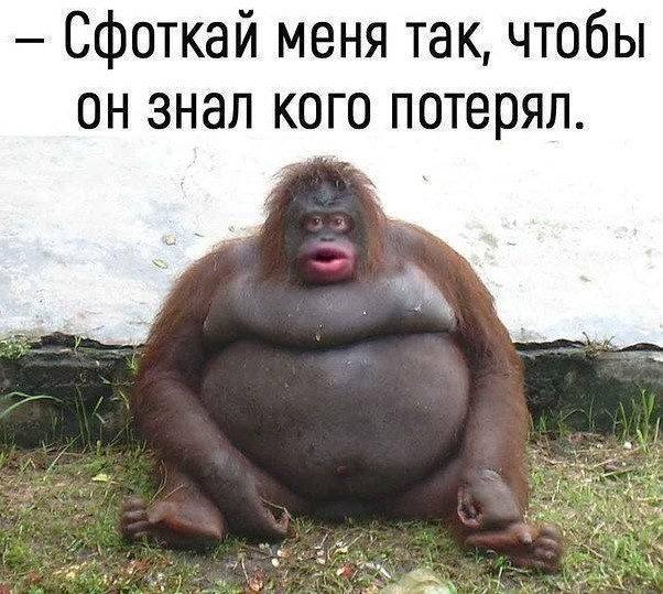 Прикольные анекдоты дня!!! анекдоты